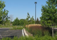 Parking Lot Bioswale Blanchard Alliance Church