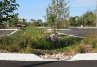 Parking Lot Bioswale Hubble Middle School