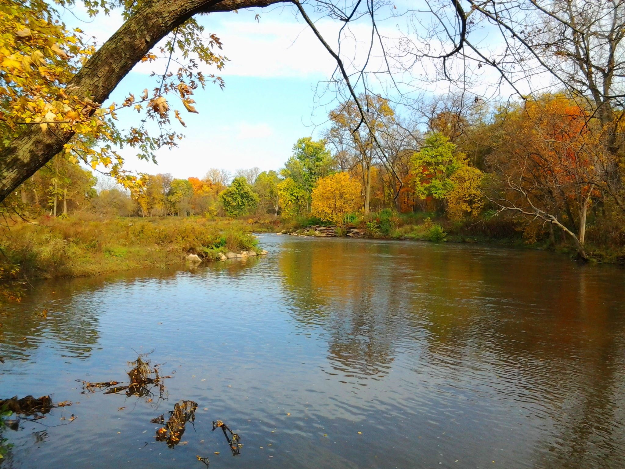 Image of river in the fall